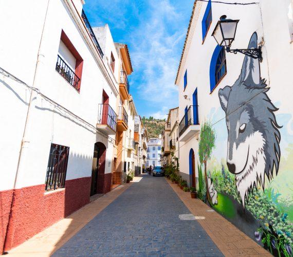 Miau, un museo en la calle